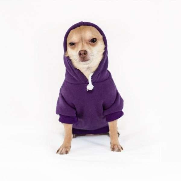 Dog Sweaters. Dog Hoodie. Dog Apparel GEARS